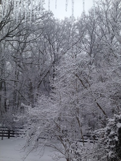 There is a Narnia